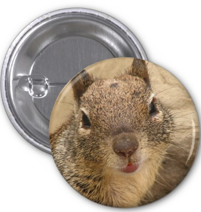 Smiling Squirrel Button