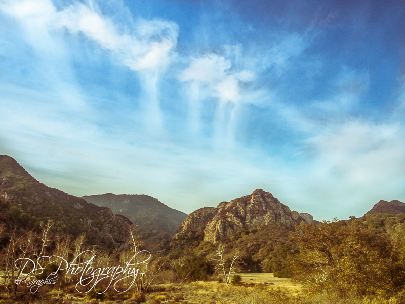 January morning at Malibu Creek State Park