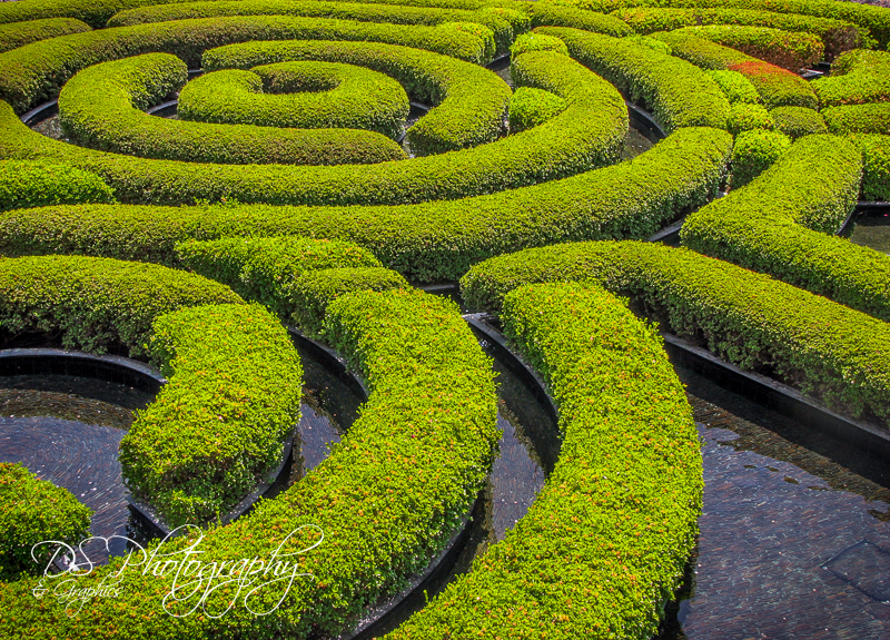 Watery Labyrinth
