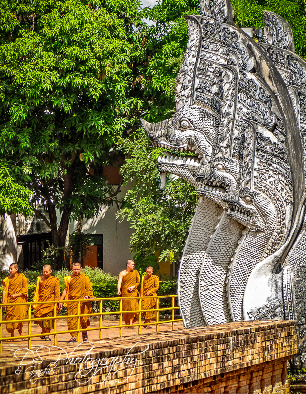 Monks at Wat Chedi Luang