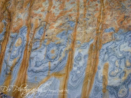 Weekly Photo Challenge: Texture 12