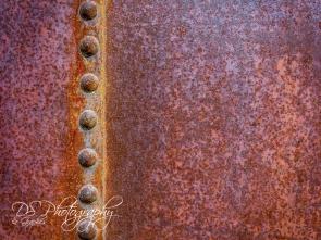 Weekly Photo Challenge: Texture - 9