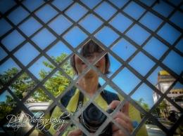 Weekly Photo Challenge zigzag - 12
